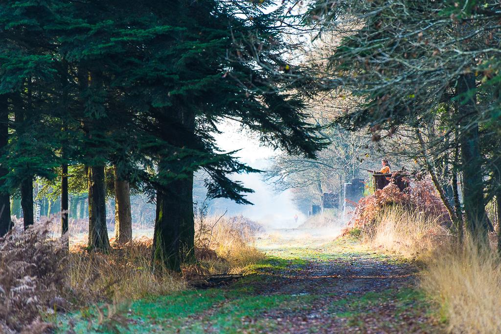 Le domaine de chasse de Boissiere